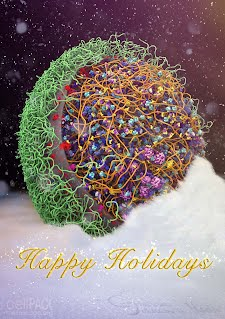 M. mycoides in snow. Happy Holidays card image by Thao Do and Graham Johnson